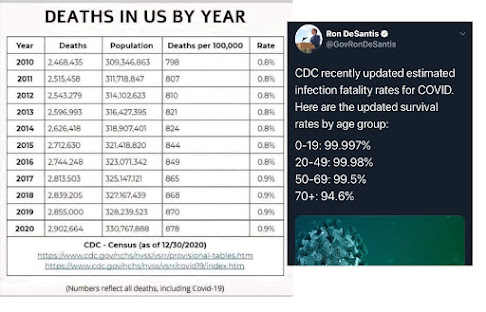 Deaths each year up to 2020 and percentage of survivability if you get CV19 (image)