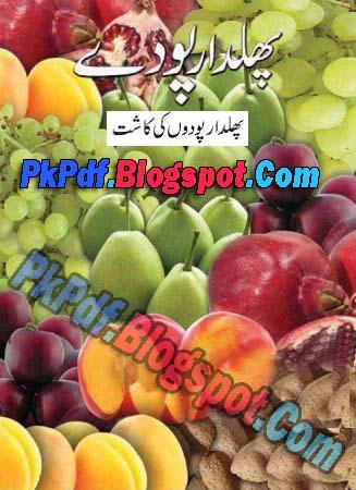 Fruit Plants Cultivation - (پھلدار پودوں کی کاشت) Phaal ...
