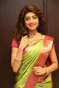 pranitha glam pics in saree-thumbnail-13