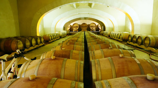 Domaine de la Citadelle - Barrel Room