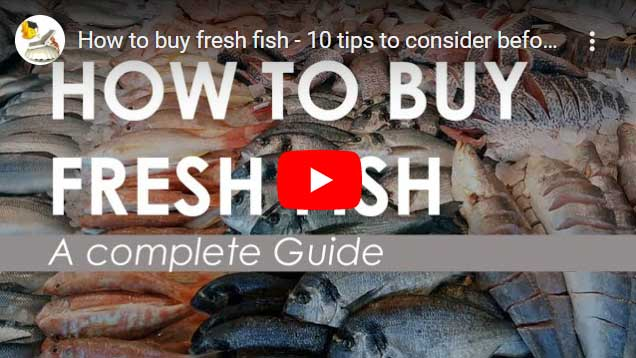How to check your fish is fresh - Tips & Tricks to Choose fresh fish