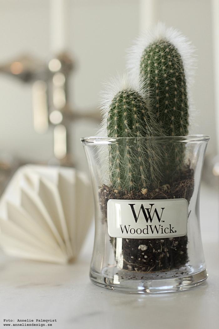 annelies design, webbutik, webshop, nätbutik, woodwick, ljus, doftljus, diy, glas, glasbehållare, kaktus, kruka, krukor, inredning, blogg, bloggar,