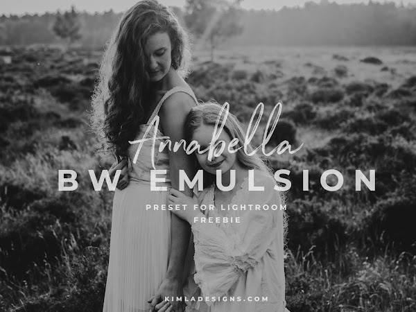 Free Annabella BW Emulsion Lightroom Preset for Photographers