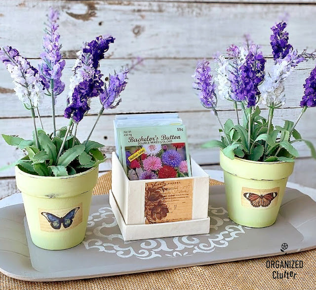 Photo of two flower pots and box of seed packets on tray.