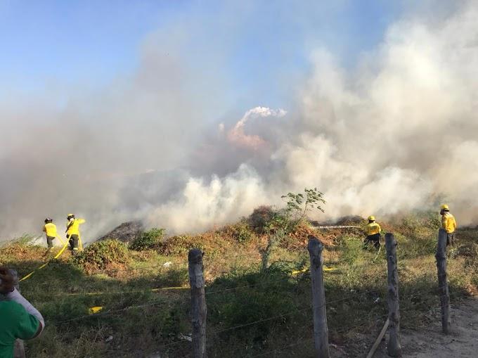 Ogricc invita a los samarios a prevenir incendios de cobertura vegetal y denunciar a quienes los generan