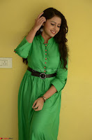 Geethanjali in Green Dress at Mixture Potlam Movie Pressmeet March 2017 014.JPG