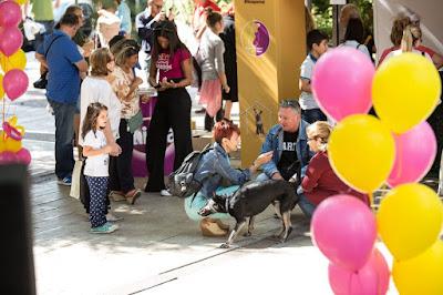 Εκδηλώσεις στην Αθήνα: «Παγκόσμια Ημέρα Ζώων»