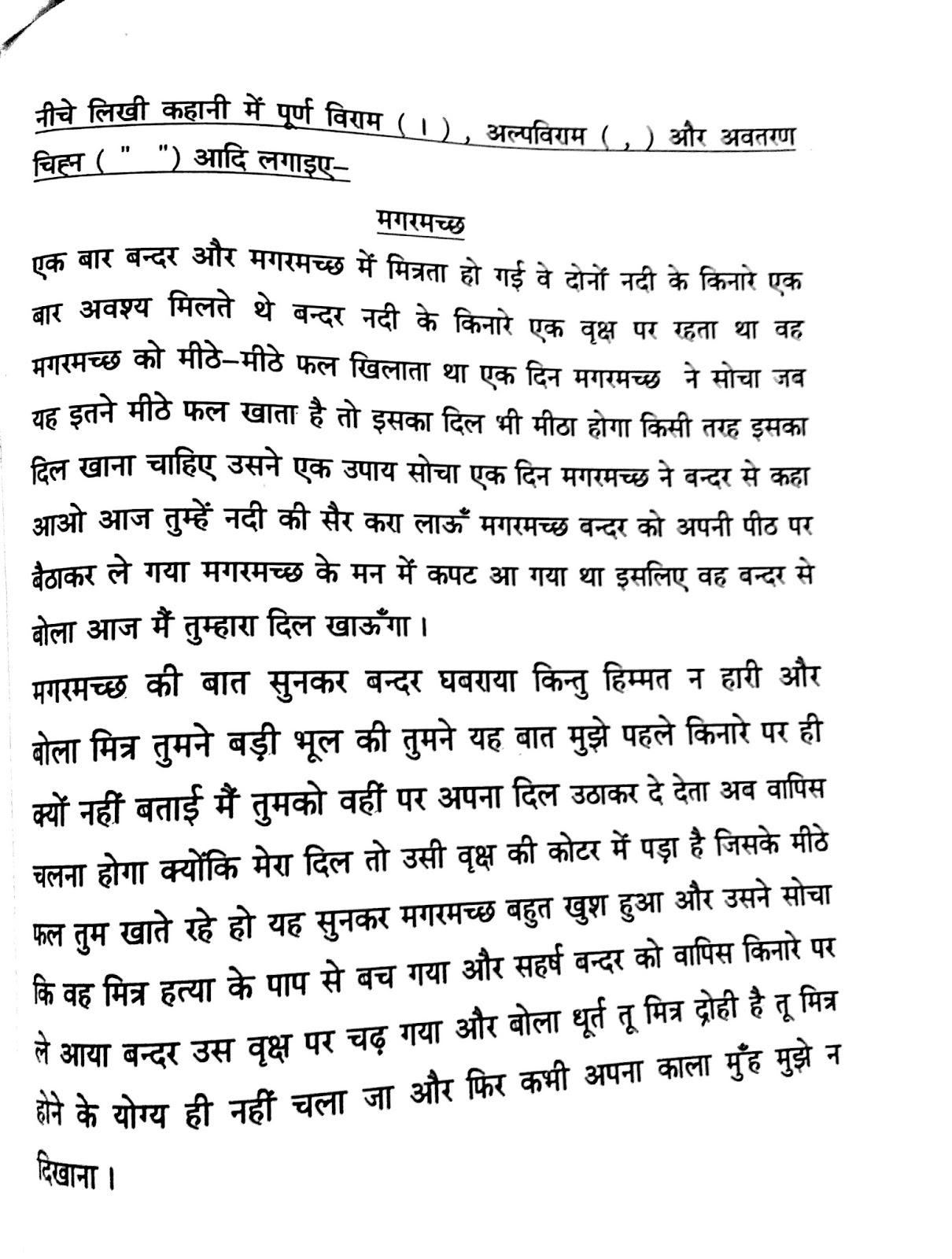 Hindi Worksheet For Grammar Punctuation