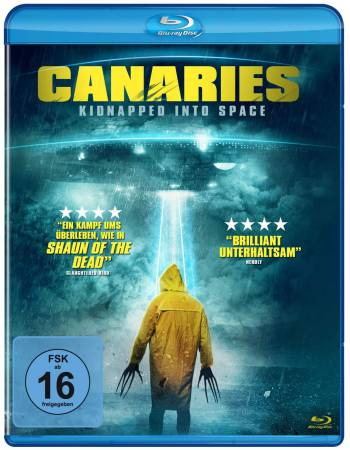 Canaries 2017 Hindi Dual Audio 300MB HDRip x264 ESubs 480p