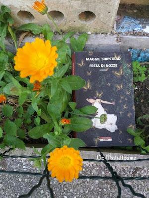 http://matutteame.blogspot.it/2017/05/maggie-shipstead-festa-di-nozze.html