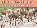 Introduction and history of rabari community
