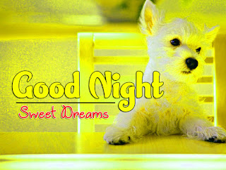 Latest Beautiful Good Night Wallpaper Free Download %2B77