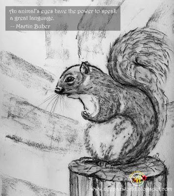 Squirrel- Fonda'sAnimalPhotoChallenge-HuesnShades