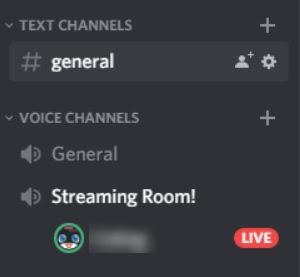 Cara Menggunakan Fitur Go Live Discord-3