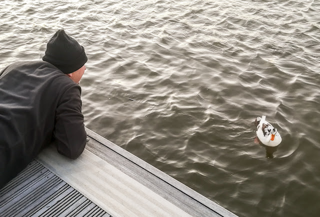 Photo of Phil laying on the pontoon to get a closer look at the unusual duck
