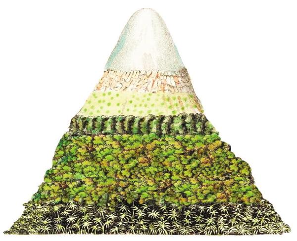 Representação esquemática do vulcão Chimborazo