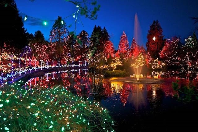 Festival of Lights no VanDusen Garden em Vancouver