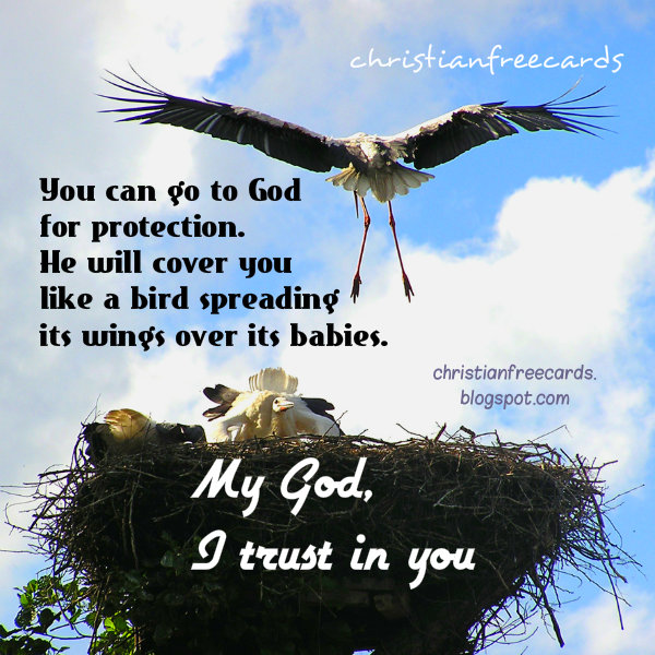 God, We trust in You. Keep us safe. Christian quotes. Free christian images. Psalm 91, by Mery Bracho. Religious free cards.
