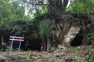 Wisata Goa Bondowoso