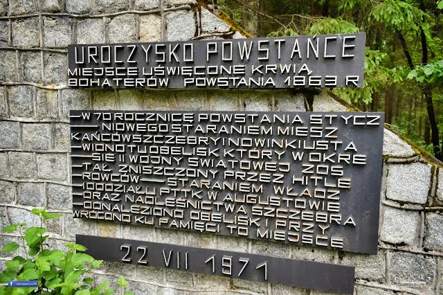 Strękowizna w Puszczy Augustowskiej - Uroczysko Powstańce