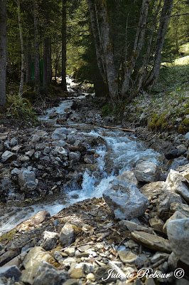 Torrent à Torgon