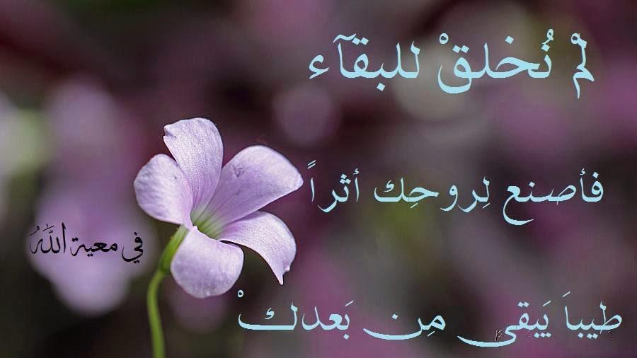 اجمل الصور المكتوب عليها باروع الكلمات والعبارات الاسلامية