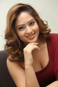 nikisha patel new sizzling photos gallery-thumbnail-16
