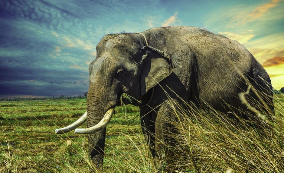 22 Tempat Wisata di Lampung Yang Bisa Jadi Rekomendasi Tempat Liburan
