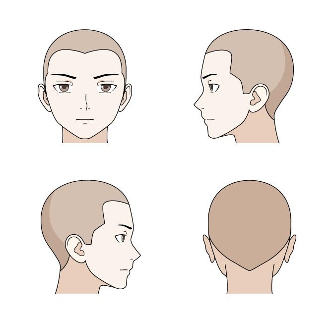Anime garis rambut pria