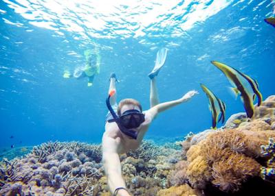 Snorkeling di Laut!