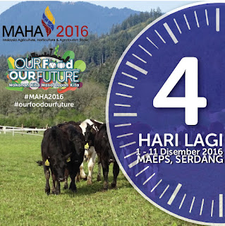 Warih-Homestay-MAHA2016-4-Hari-Lagi