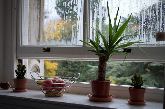 open window Photo by William Santos on Unsplash