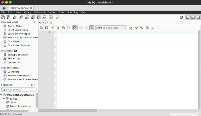 manipulacao do mysql com o MySQL-Workbench