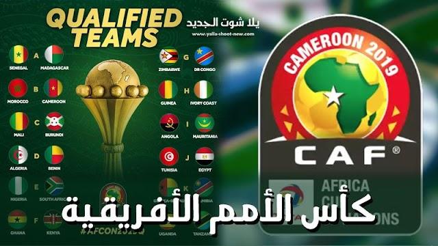 المنتخبات المتاهلة لدور الـ8 فى كاس الامم الافريقية 2019