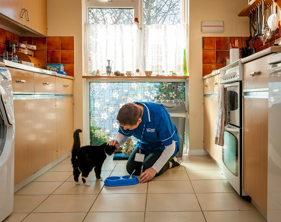 A Caremark live in carer can help with looking after your pets