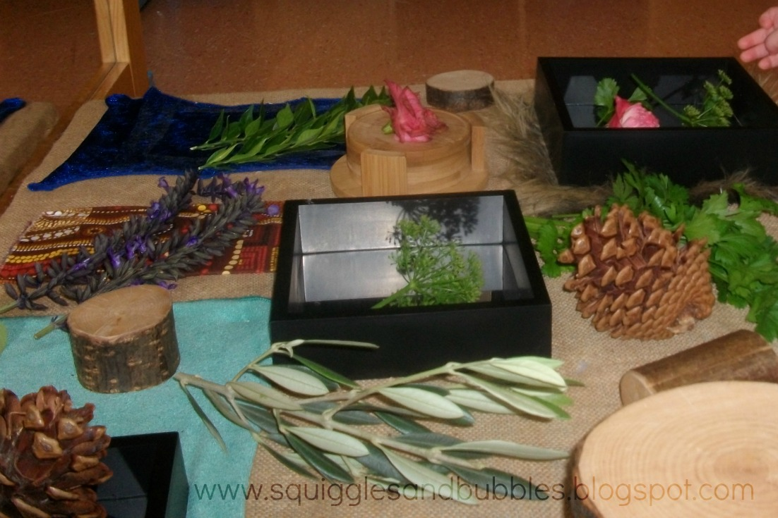 http://squigglesandbubbles.blogspot.com.au/2015/01/herb-sensory-table.html