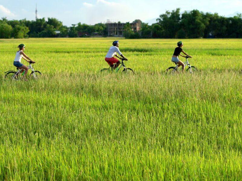 Hoi An bicycle