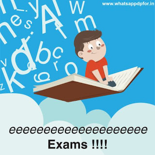Funny-exam-dp
