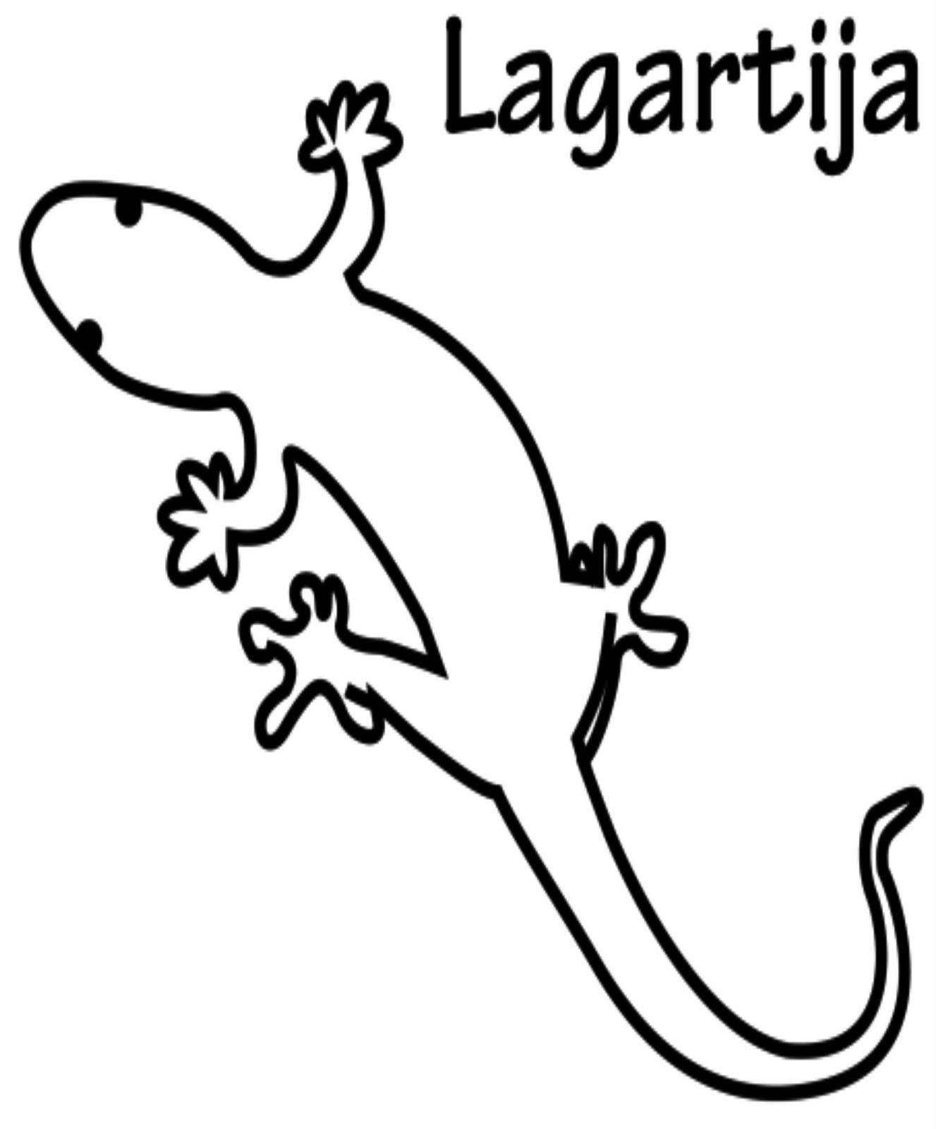List Of Synonyms And Antonyms Of The Word Lagartija Dibujo