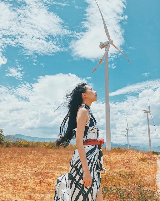 Cánh đồng điện gió Tuy Phong, Bình Thuận