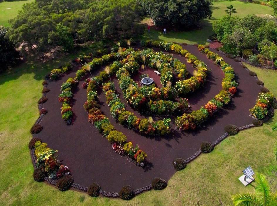 Jardín de arbustos