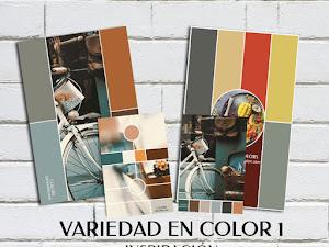 Variedad En Color 1