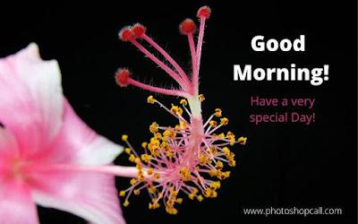 good-morning-shayari-photos-download