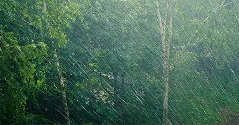 dampak hujan frontal