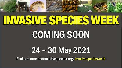 Invasive Species Week, 24-30 May 2021.