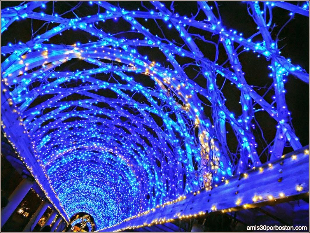 Aqui Hay Imagenes Bonitas De Navidad Para Fondo De: Navidad En Boston: Decoraciones 2014