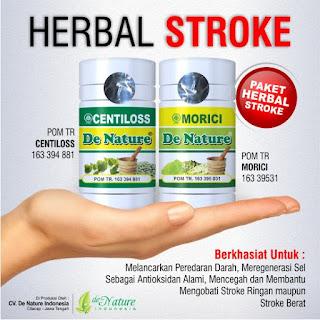 obat herbal stroke paling ampuh, obat herbal stroke, obat herbal stroke ampuh