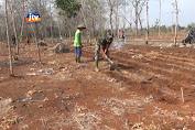 Satgas TMMD 109 Lamongan Turun Bantu Petani Mencangkul