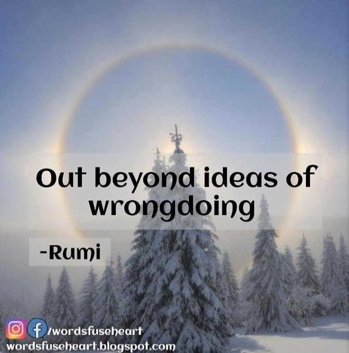 Best Motivational Lines By Rumi | Out Beyond ideas of Wrongdoing and Rightdoing there is a field