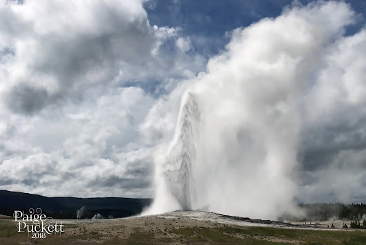 Love Sown: Chasing Geysers from Canyons to Old Faithful